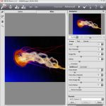 AKVIS Neon: Photoshop Plug-in Review